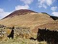 The slopes of Carrifran Gans - geograph.org.uk - 158114.jpg