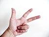 Three first fingers.JPG