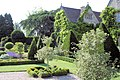 Topiary in the Abbey Gardens Malmesbury - geograph.org.uk - 2283496.jpg