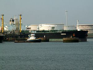Torinia at the '5e Petroleumhaven', Port of Rotterdam, Holland 07-May-2006.jpg