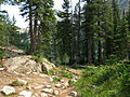 Trail to Alpine Lake (15184859342).jpg