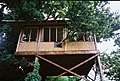 Tree House in an Exotic Garden - geograph.org.uk - 142049.jpg