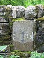 Tree of Life - geograph.org.uk - 845980.jpg