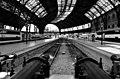 Trens 2 (39215340).jpeg