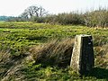 Triangulation pillar and the edge of a bridleway, near Ravensroost Wood - geograph.org.uk - 1234888.jpg