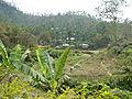 Tribal Village of Khasia Madhobkunda Sylhet Bangladesh 1.JPG