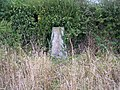 Trig Point, Little Green, Weston Hill. - geograph.org.uk - 55370.jpg