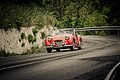 Triumph TR2 (Mille Miglia 2012).jpg