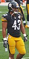 Troy Polamalu 2013.jpg