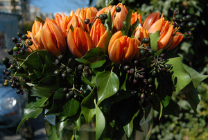 a tulip arrangement