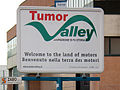 Tumor Valley.jpg
