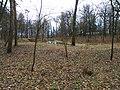 Turbiv park 153.jpg