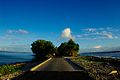 Tuvalu Inaba-18.jpg