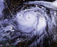 台風第19号(1991年9月23日)