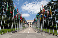 United Nations Flags.jpg