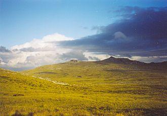 Patagonian grasslands - Grassland in the Falkland Islands