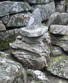 Vaktmästaren Domedagsfrid Alphems arboretum utanför Floby 2655.jpg