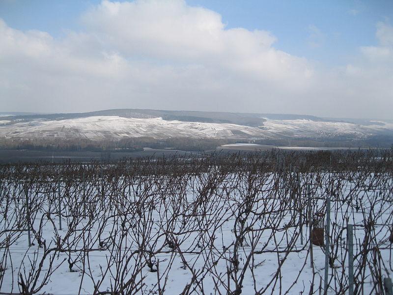 Vue de la vallée de la Marne et de la Montagne de Reims, entre Damery et Cumières, depuis Vauciennes.