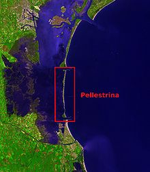 The island of Pellestrina. Southern part of the Venetian Lagoon (Pellestrina highlighted)