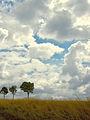 Vertus Cloudscape.jpg