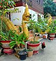 Vientiane.- TempleThat Luang Tai (Laos).jpg