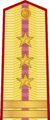 Vietnam People Army WO-5.png