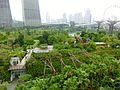 View From Park - panoramio.jpg
