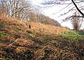View along an old railway embankment - geograph.org.uk - 1638949.jpg