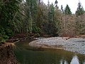 View of Rosewall Creek British Columbia from picnic area.JPG
