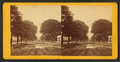 View of a muddy street with a puddle after rain, from Robert N. Dennis collection of stereoscopic views.png