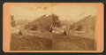 View of a sightseer looking up the bluff. Dubuque, Iowa, by Root, Samuel, 1819-1889.png