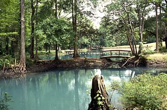 Florida Caverns State Park - Image: View of the Blue Hole Spring swimming area at Florida Caverns State Park Marianna, Florida (3326614256)