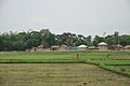 Village Orgram - NH 2B - Bardhaman 2014-06-28 5116.JPG