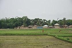 Village Orgram - NH 2B - Bardhaman 28.06.2014 5116.JPG