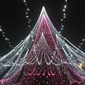 Vilnius Christmas Tree.jpg