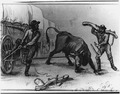 "W.H. Jackson sketch, ""Yoking a Wild Bull"" - NARA - 286057.tif"