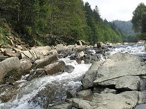 Bieszczady County - Image: Waldkarpaten Sine Wiry