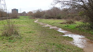 Wandle Meadow Nature Park - Image: Wandle Meadow Nature Park 3
