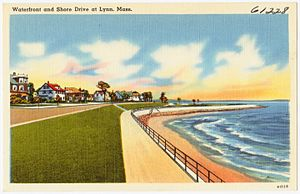 Lynn Shore Drive - Vintage Lynn Shore Drive Postcard