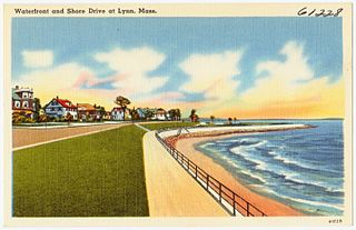 Lynn Shore Drive