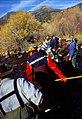 Wild trout project e walker river bridgeport0090 (25673097453).jpg