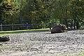 Wildpark Bruderhaus - panoramio (2).jpg