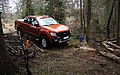 Wildtrak in the woods.jpg