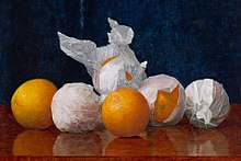 William J. McCloskey (1859–1941), Wrapped Oranges, 1889. Oil on canvas. Amon Carter Museum of American Art.jpg
