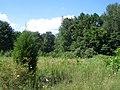 Winslow Sports Park - panoramio.jpg