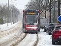 Winter Loosduinen 2021 1.jpg