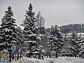 Winterlicher Ausblick von der Titiseestraße in Titisee-Neustadt - panoramio.jpg