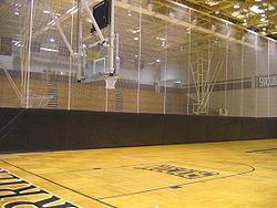 Indoor Home Basketball Court