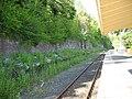 Wolsingham railway station platform - geograph.org.uk - 1309593.jpg