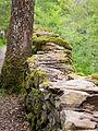 Woodland wall (7819856372).jpg
